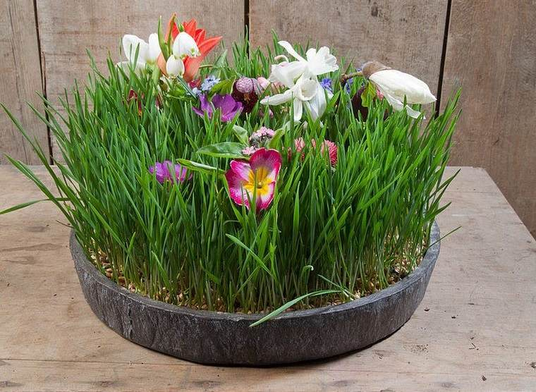 pasto de trigo ideas para decorar