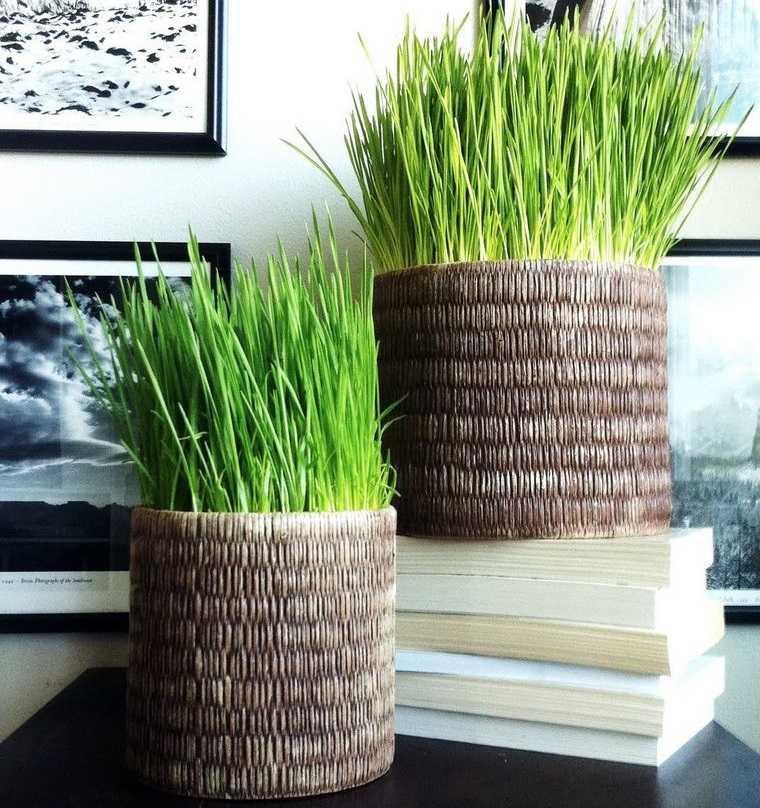 pasto de trigo para decorar en primavera