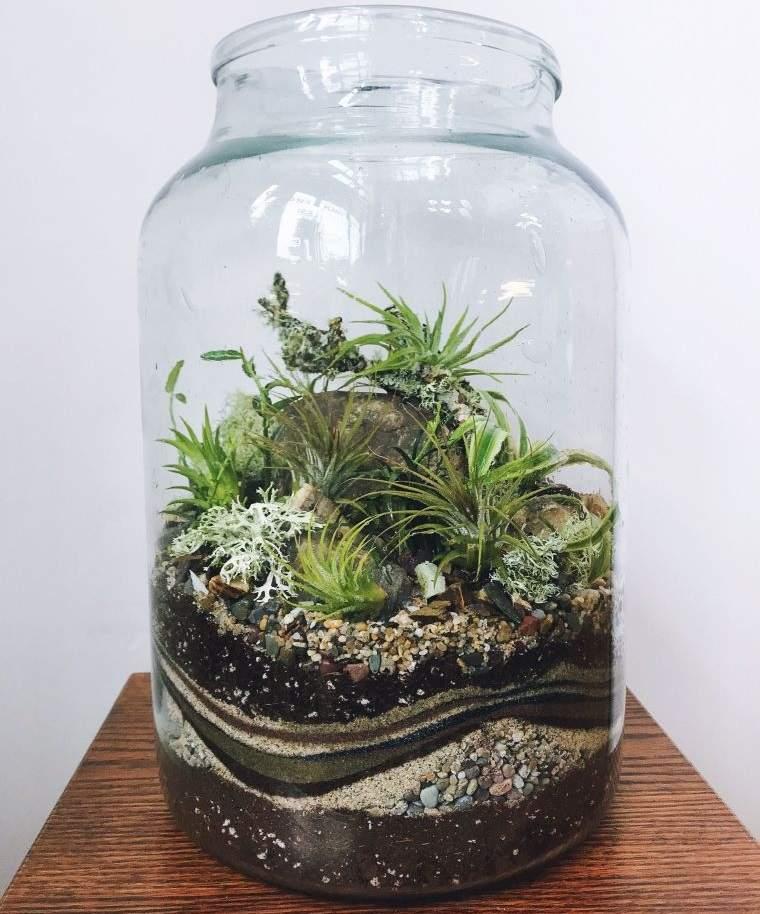 terrarios de cristal bajo mantenimiento