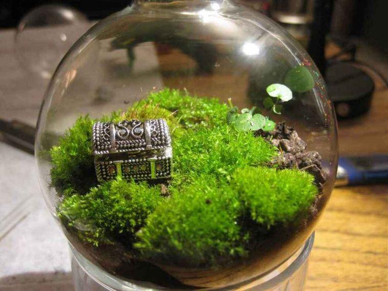 terrarios de cristal con musgo cofre