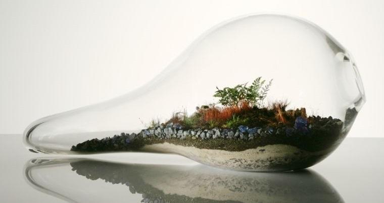 terrarios de cristal creativos