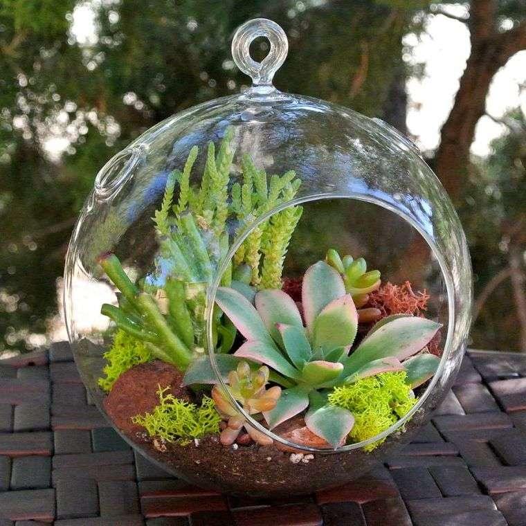 terrarios de cristal elemento decorativo