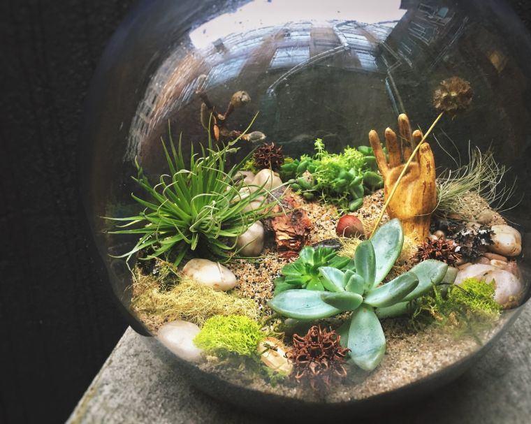 terrarios de cristal elementos creativos