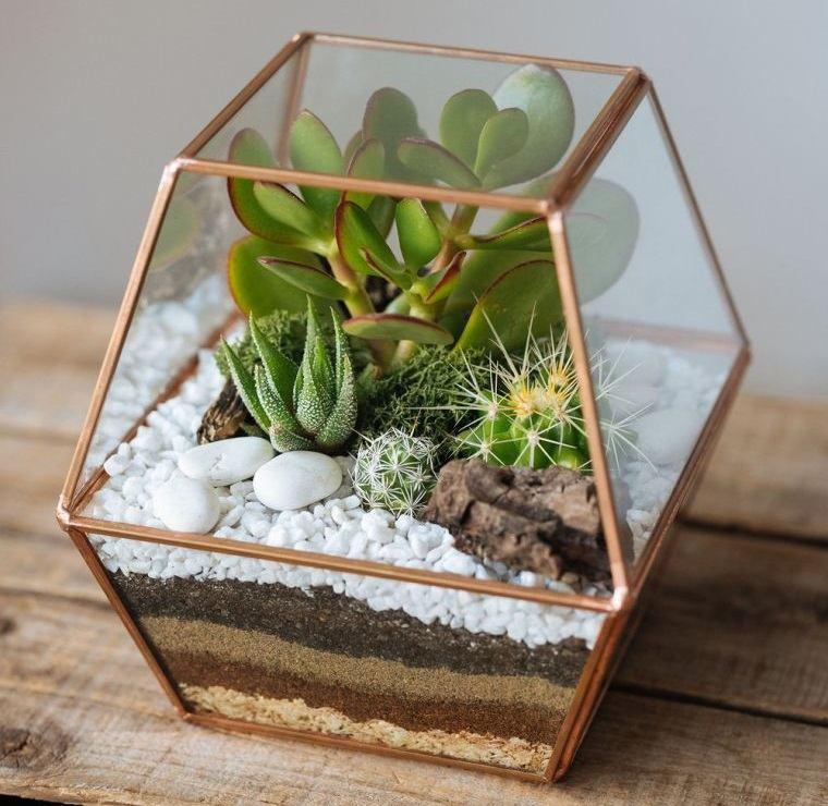 terrarios de cristal en recipiente elegante