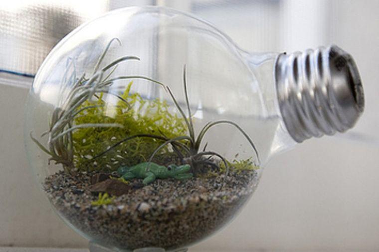 terrarios de cristal ideas