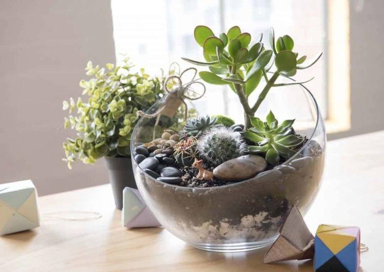 terrarios de cristal jardineria interior