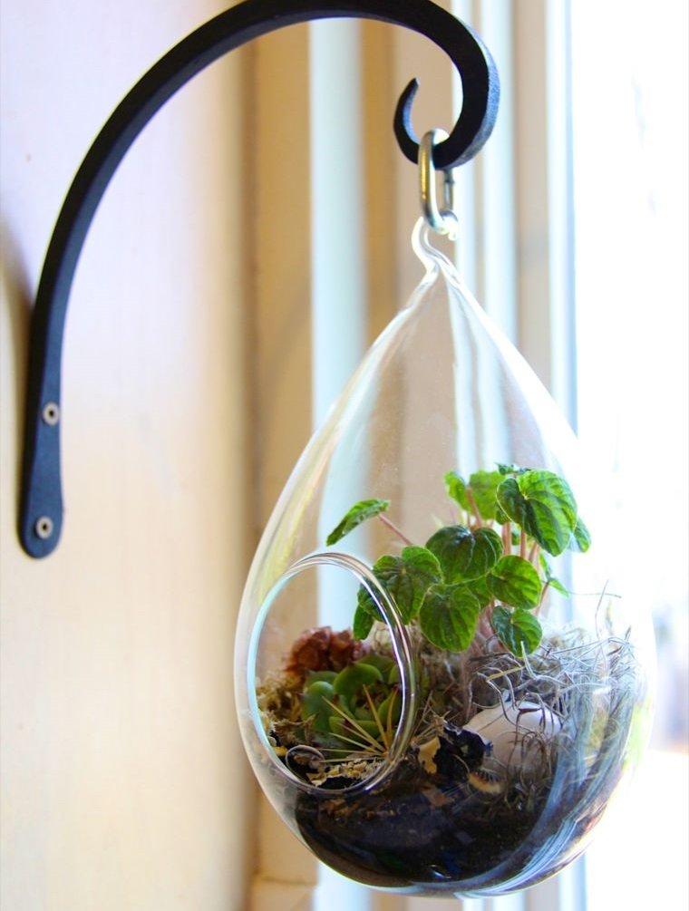 terrarios de cristal para colgar