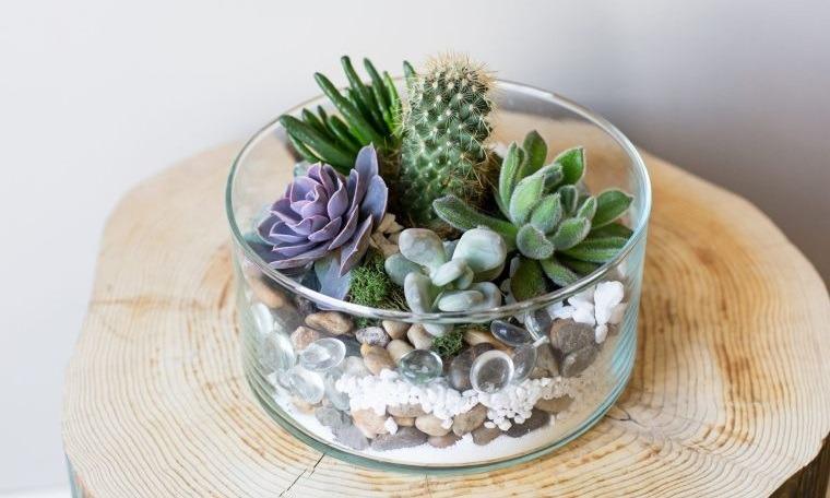 terrarios de cristal para decorar