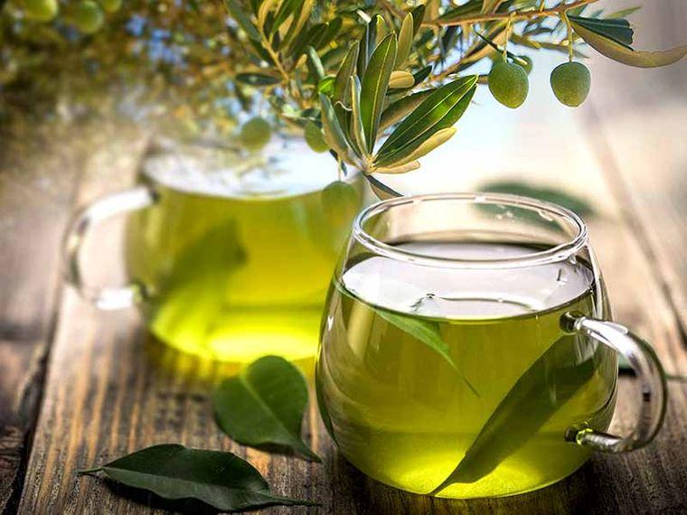 tipos de hierbas antivirales hoja olivo