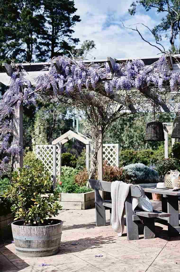plantas-opciones-jardin-moderno-casa