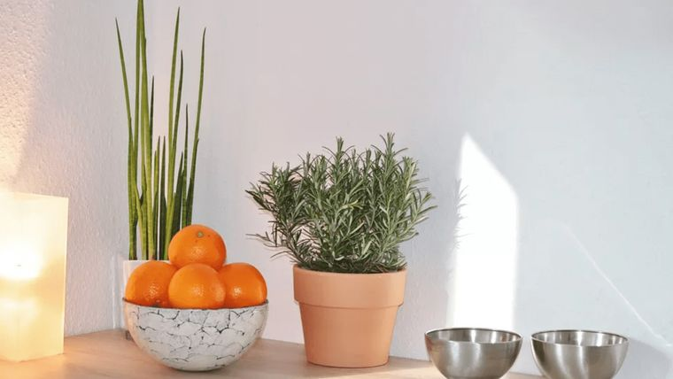 feng shui decorar con frutas