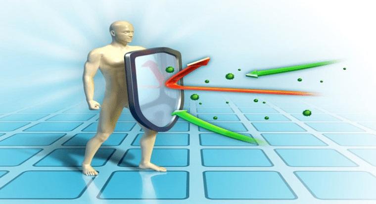 sistema inmunológico fuerte equilibrio