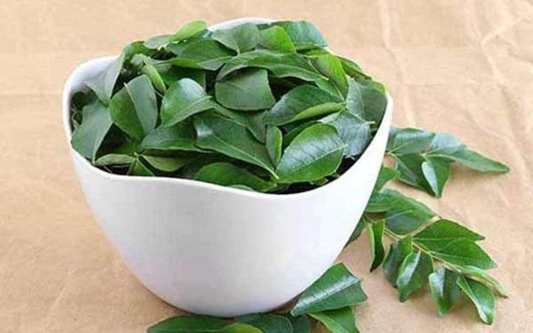 alternativa para las canas hojas curry