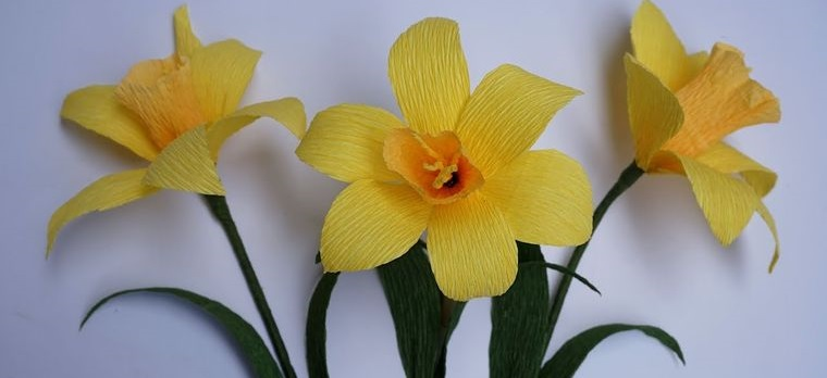 flores de papel narcisos para decorar