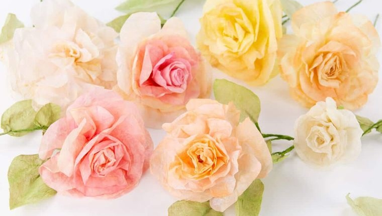 flores de papel rosas filtro de cafe