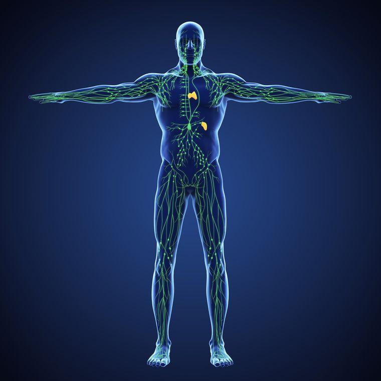 retención de líquidos problemas sistema linfatico