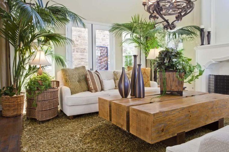 decoración natural plantas de interior