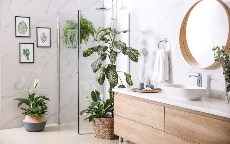 decoración natural plantas en baño