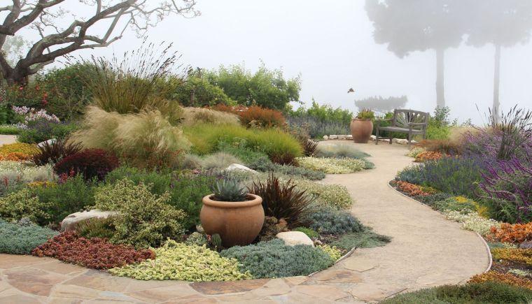 ideas-plantas-jardin-opciones