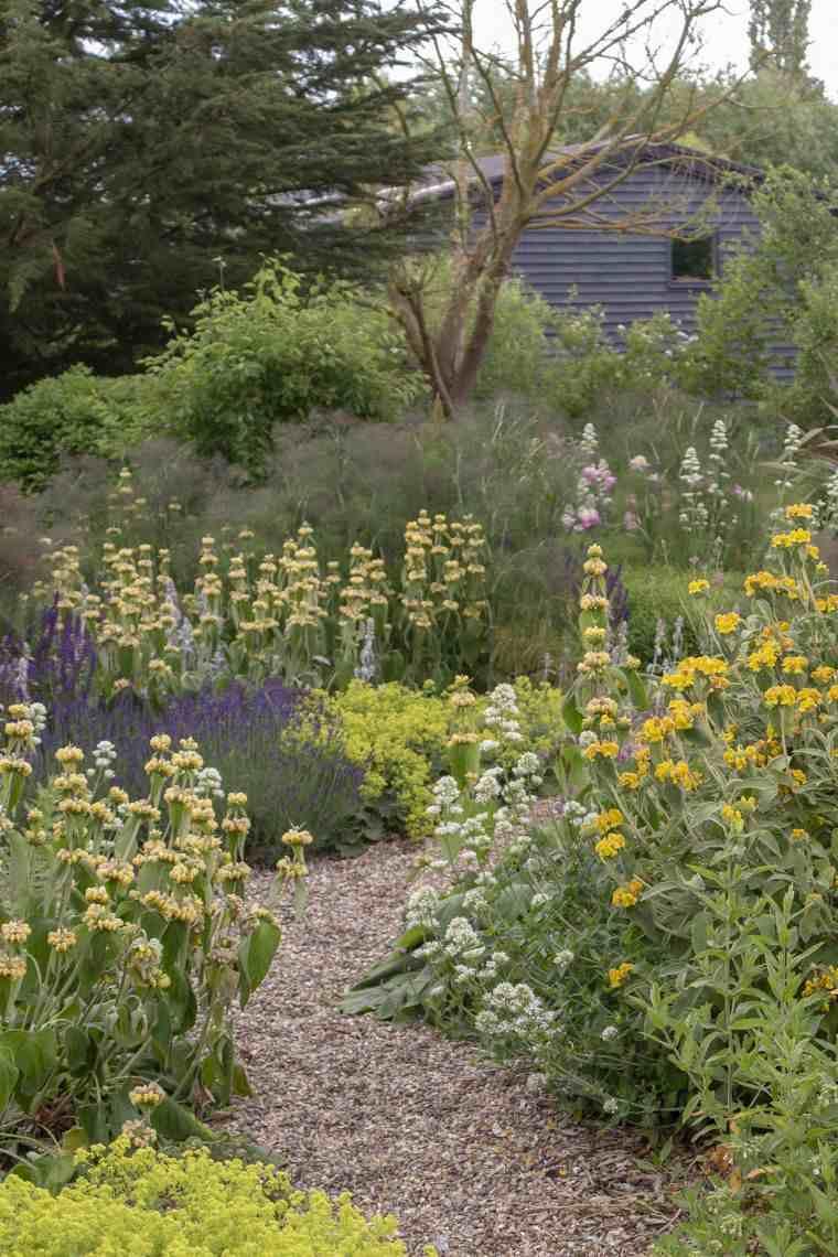 Jardín seco contemporaneo-diseno-flores