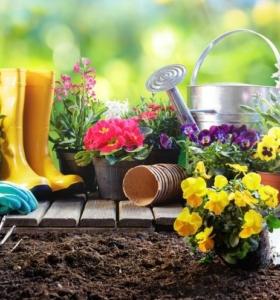 jardinería beneficios saludables