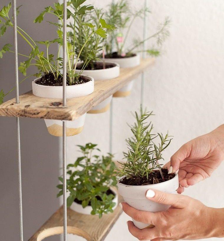 Jardinería – Descubre los beneficios para la salud que otorga esta hermosa actividad
