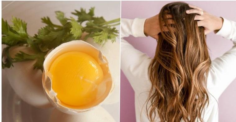cuidado del cabello aceite oliva huevo