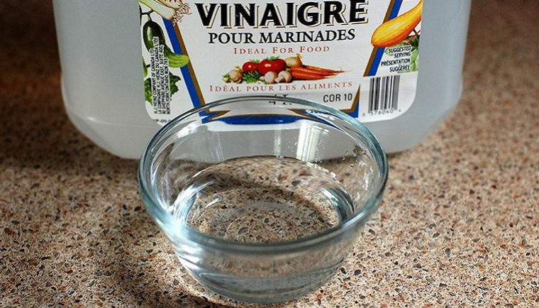 hormigas en casa eliminar con vinagre