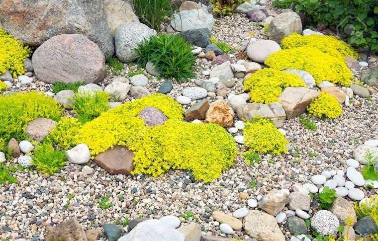 jardín de rocalla diseño natural