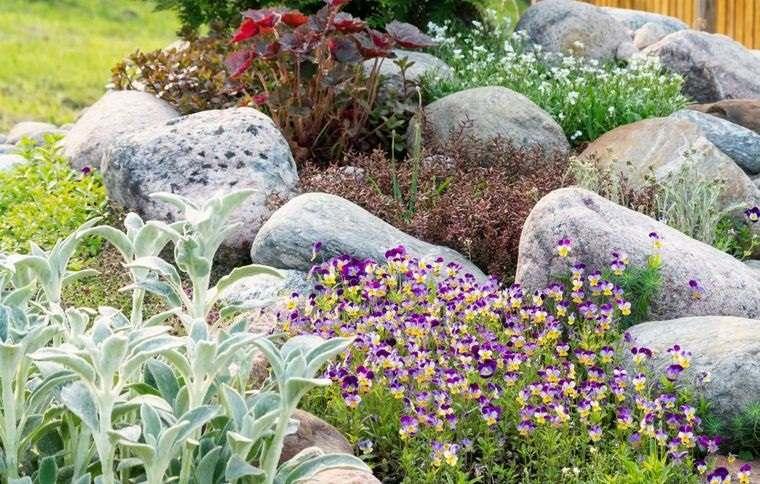 jardín de rocalla facil de cuidar