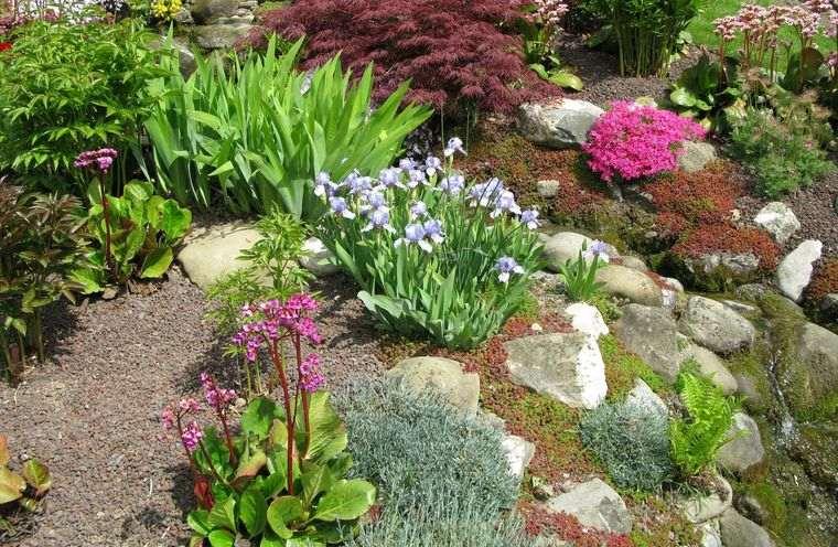jardín de rocalla vegetacion bajo mantenimiento