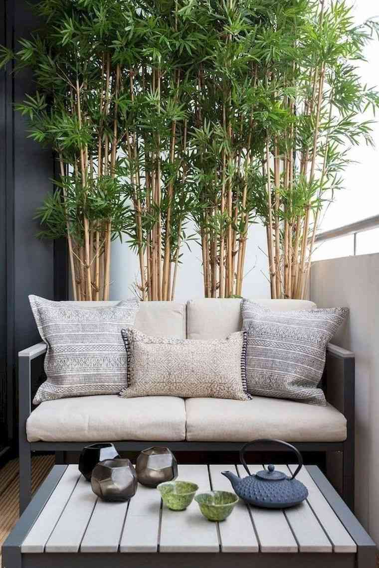 Ideas-para-ocultar-balcon-acacia
