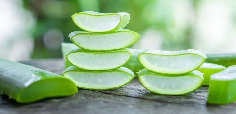beneficios del aloe vera antioxidante
