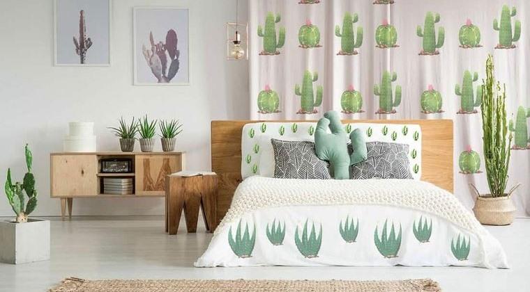 cactus de interior de dormitorio