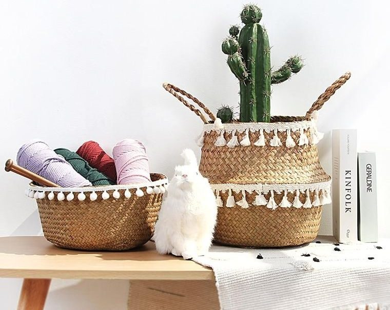 cactus de interior decoracion acogedora