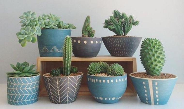 cactus de interior para centro de mesa