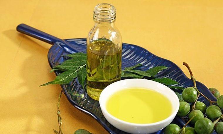 cómo ahuyentar mosquitos aceite de neem