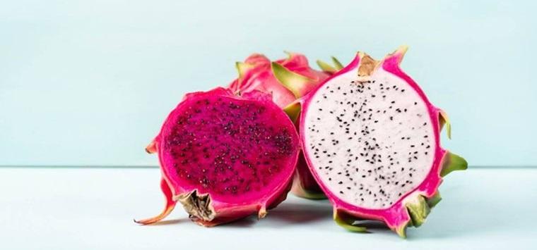 fruta de cactus disminuye la resaca