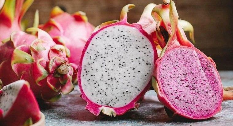 Fruta de cactus – Descubre los beneficios de esta fruta para la salud