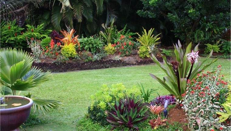 jardín tropical bien cuidado