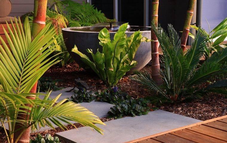 jardín tropical con elemento agua