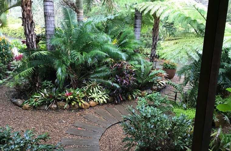 jardín tropical en gran espacio exterior