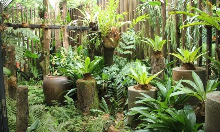 jardín tropical exuberante