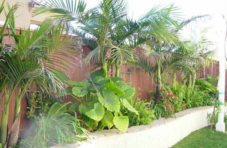 jardín tropical gran vegetacion