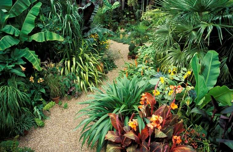 jardín tropical inspirado en selva