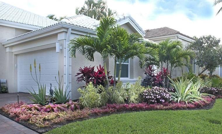 jardín tropical plantas resistentes