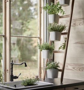 mini huerto en casa con hierbas culinarias