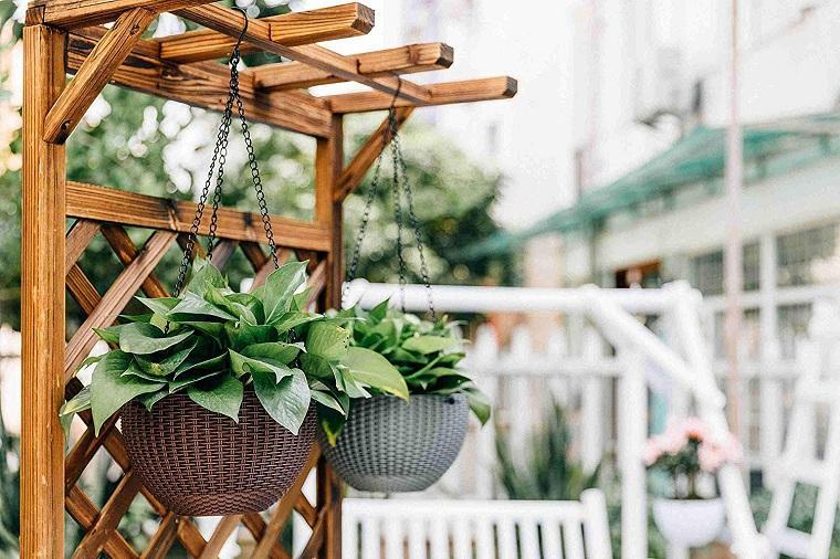 plantas-colgantes-de-exterior-consejos