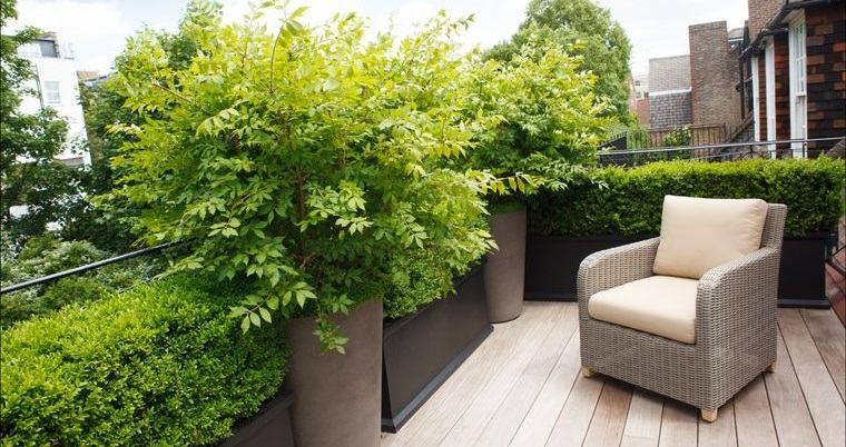 cómo cerrar una terraza sin obra con diversas plantas