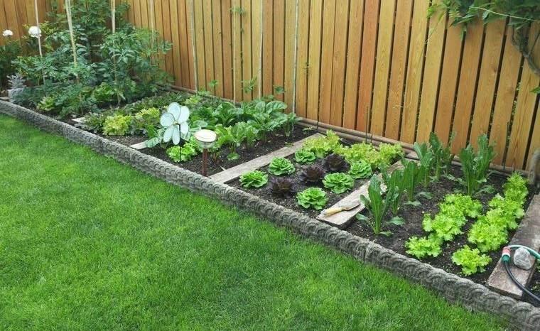 huerto ecológico en casa para cultivar